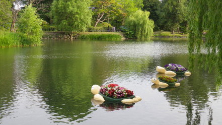 カメ型水上花壇