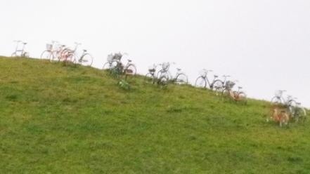 モエレ山の自転車