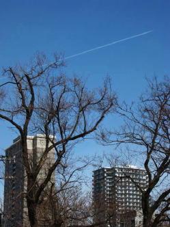 札幌の街並と飛行機雲