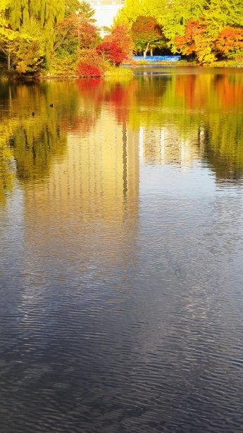 中島公園の池