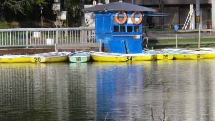中島公園のボート
