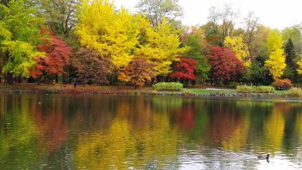 中島公園の紅葉具合