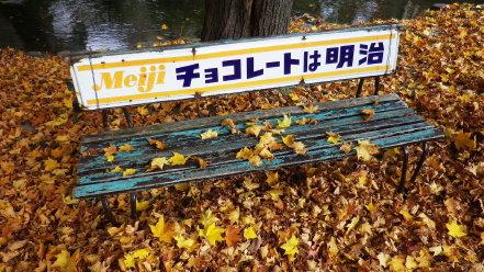 落ち葉と古いベンチ