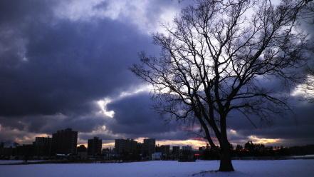 冬の夕暮れ時