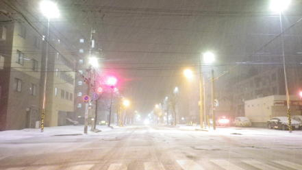 雪の降っている札幌市内