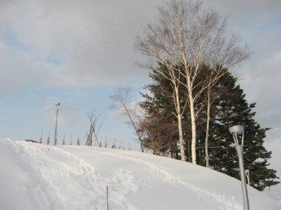 冬の旭山記念公園
