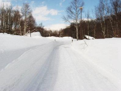 冬の野幌森林公園自然ふれあい交流館付近