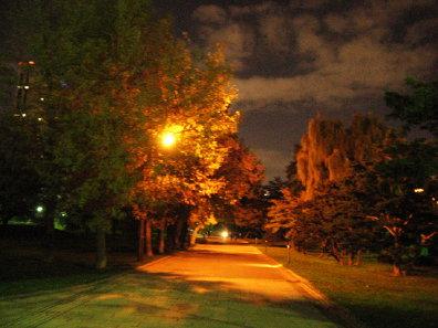夜の中島公園