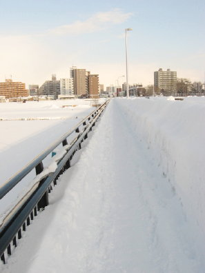 冬の南大橋