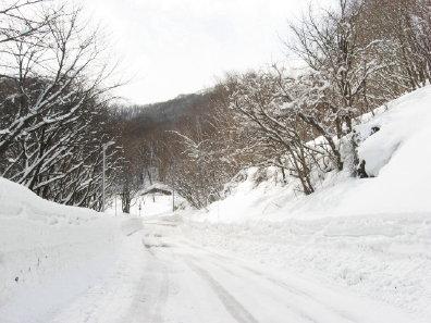 旭山記念公園駐車場の道路