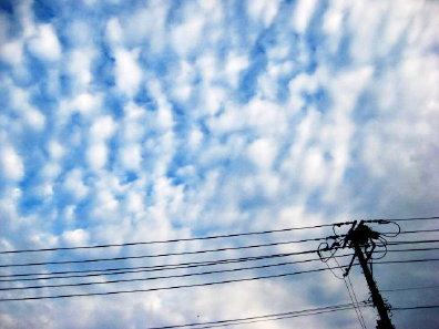 電柱と夕方の空